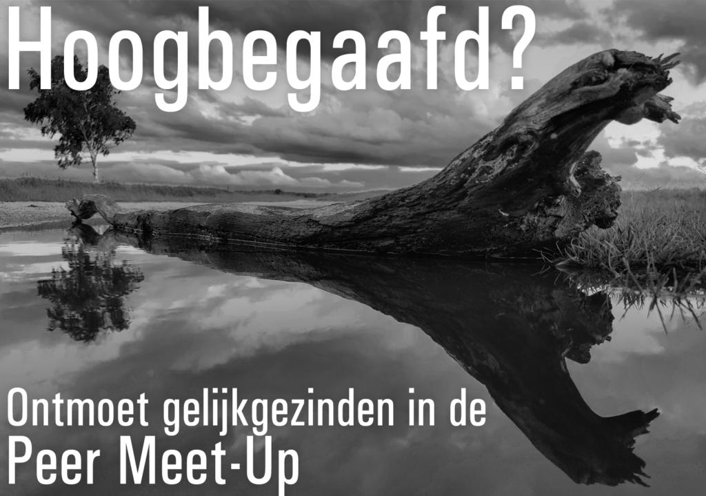 Hoogbegaafd? Peer Meet-Up